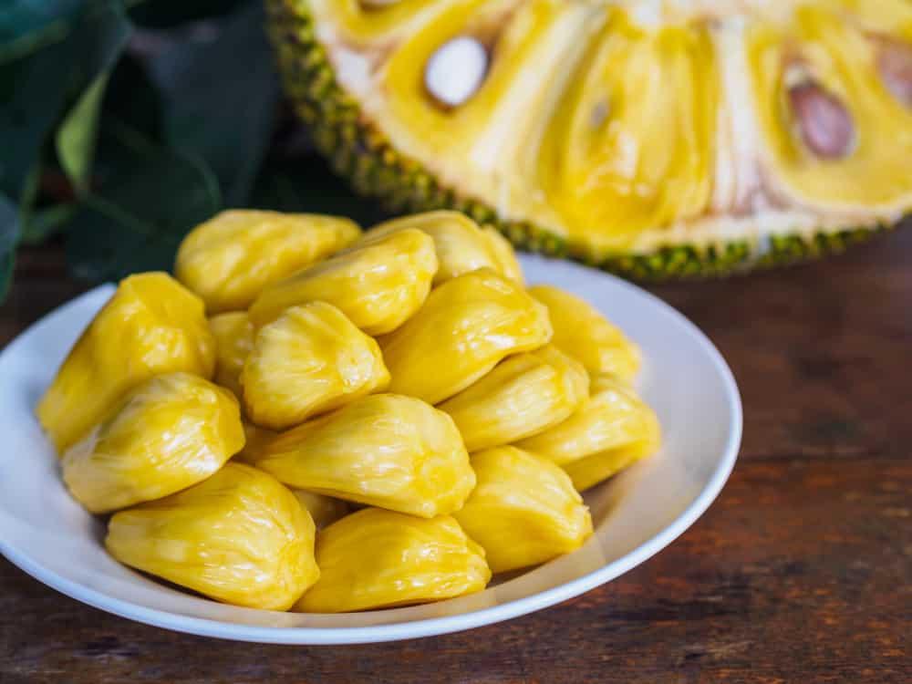 Jackfruit–Qua-Mit